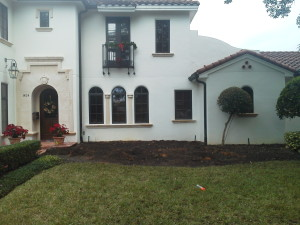 Before picture of right side of front year for a landscaping redesign in Winter Park